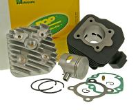 cylinder kit Top Performances Trophy 70cc for Peugeot vertical AC