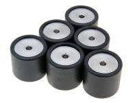 roller set / variator weights Polini 19x17mm - 10.0g