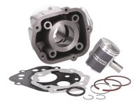 Naraku Cylinder Kit 50cc for Derbi Senda GPR, Aprilia RS RX SX, Gilera RCR, SMT (D50B0) Derbi Engines