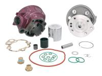cylinder kit Top Performances 2 Plus 75cc 49.5mm for Minarelli AM6