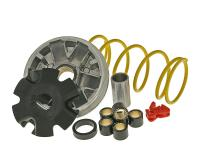 Malossi Racing Parts Morini Variator Multivar for Aprilia, Derbi, Italjet, Hyosung, Suzuki Scooters