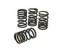 valve spring set Malossi for Honda SH300i 2007-
