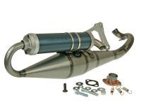 exhaust Malossi MHR Team for Keeway RY6 50 -2008