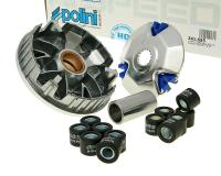 Polini Race Variator Polini Hi-Impact Hi-Speed for CPI, Keeway, Benelli, QJ, Generic for China 2T 1PE40QMB Engine Scooters