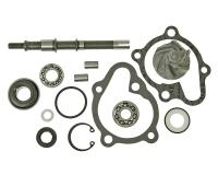 Vicma Kymco 150cc Water Pump Repair Kit for Kymco 125-150 LC, Bet and Win 125-150cc, Yager 125, Malaguti Warrior F18 150cc by VParts Scooter Replacement Parts