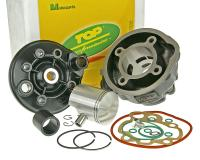 Race 70cc Cylinder Kit Top Performances Trophy Series 70cc for Minarelli AM Engines by Top Performance Racing Parts